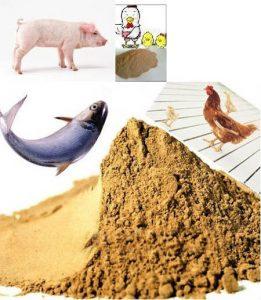 feed yeast powder