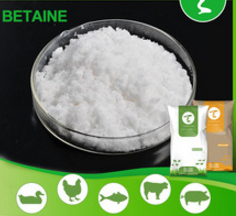 betaine HCL 98%