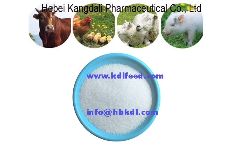 poultry feed addictive Betaine Hcl,98% Feed Supplement