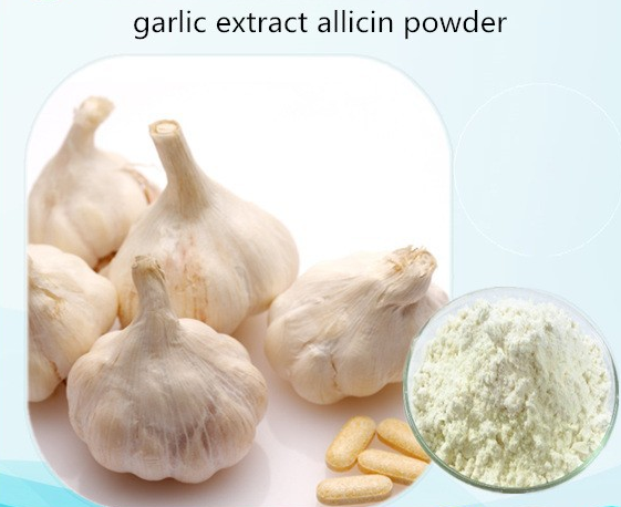 feed addictive allicin powder