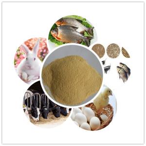 Additifs alimentaires animales de levure en poudre