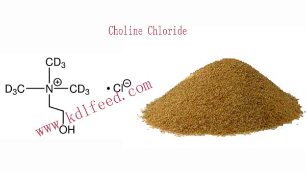 kdl Choline Chloride feed addictive