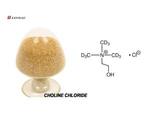 choline chloride feed addictive