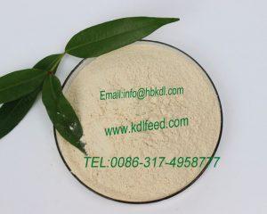 Allicin Garlic Powder feed supplement for Poultry&Aqua FeedAllicin Garlic Powder feed supplement for Poultry&Aqua Feed