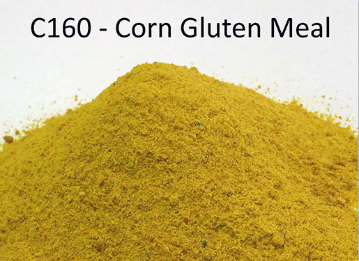 Corn-gluten-meal-60-Feed-Additive-low