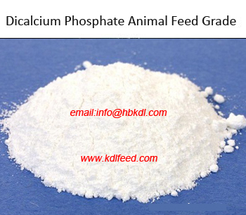 Dicalcium Phosphate Feed Grade,DCP feed addictive manufacturer