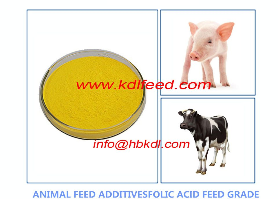 Vitamin B9 Folate Folic Acid -poultry nutrition and feeding Additives