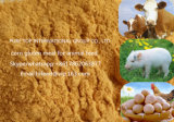 2017 Animal Fodder Corn Gluten Meal Made in China