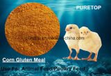 Corn Gluten Meal for Feed Additive