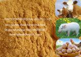 Protein 60% Corn Gluten Meal